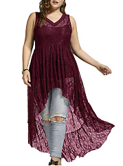 V-Neck  Decorative Lace  Curved Hem  Hollow Out Plus Size Midi & Maxi Dress