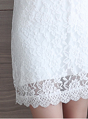 Round Neck  Lace Plain Shift Dress