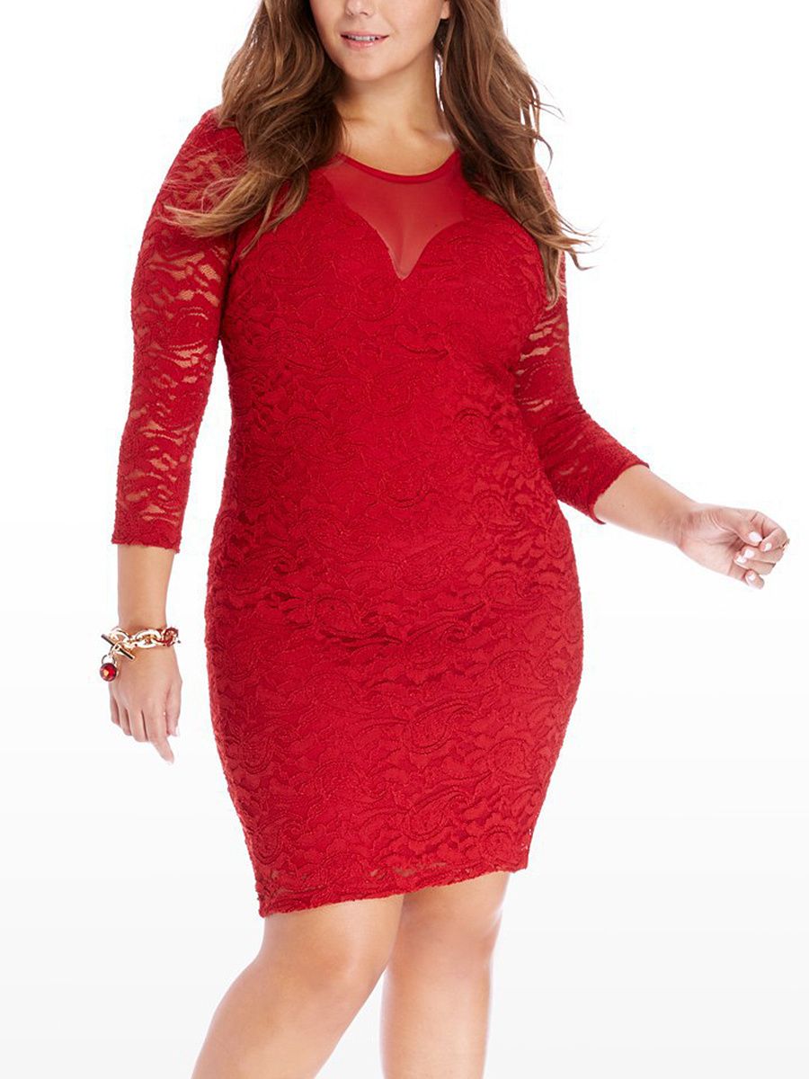 Round Neck Plain Lace Hollow Out Plus Size Bodycon Dress