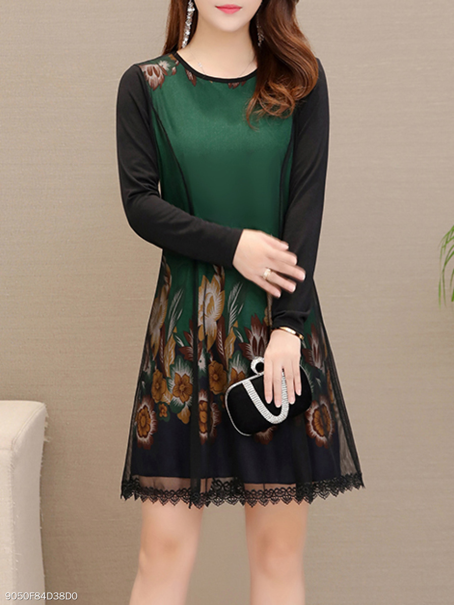 Round Neck  Decorative Lace  Printed Skater Dress