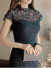 Band Collar  Plain  Lace Bodycon Dress