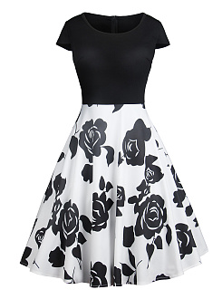 Round Neck  Colouring Printed Skater Dress