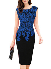 Round Neck  Decorative Lace  Color Block Bodycon Dress