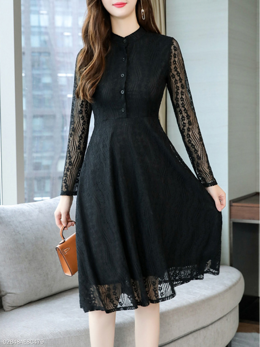 Band Collar  Decorative Button  Lace Skater Dress