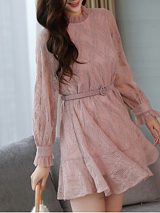 Crew Neck  Hollow Out Lace Skater Dress
