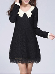 Doll Collar Hollow Out Lace Shift Dress