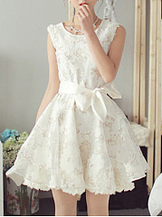 Round Neck  Bowknot  Floral Skater Dress