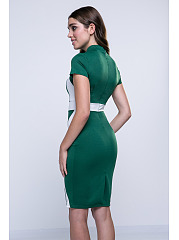 Assorted Colors Zips Graceful Fabulous Band Collar Bodycon Dress