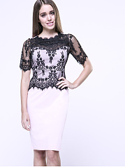 Celebrity Crew Neck Decorative Lace Hollow Out Bodycon Dress