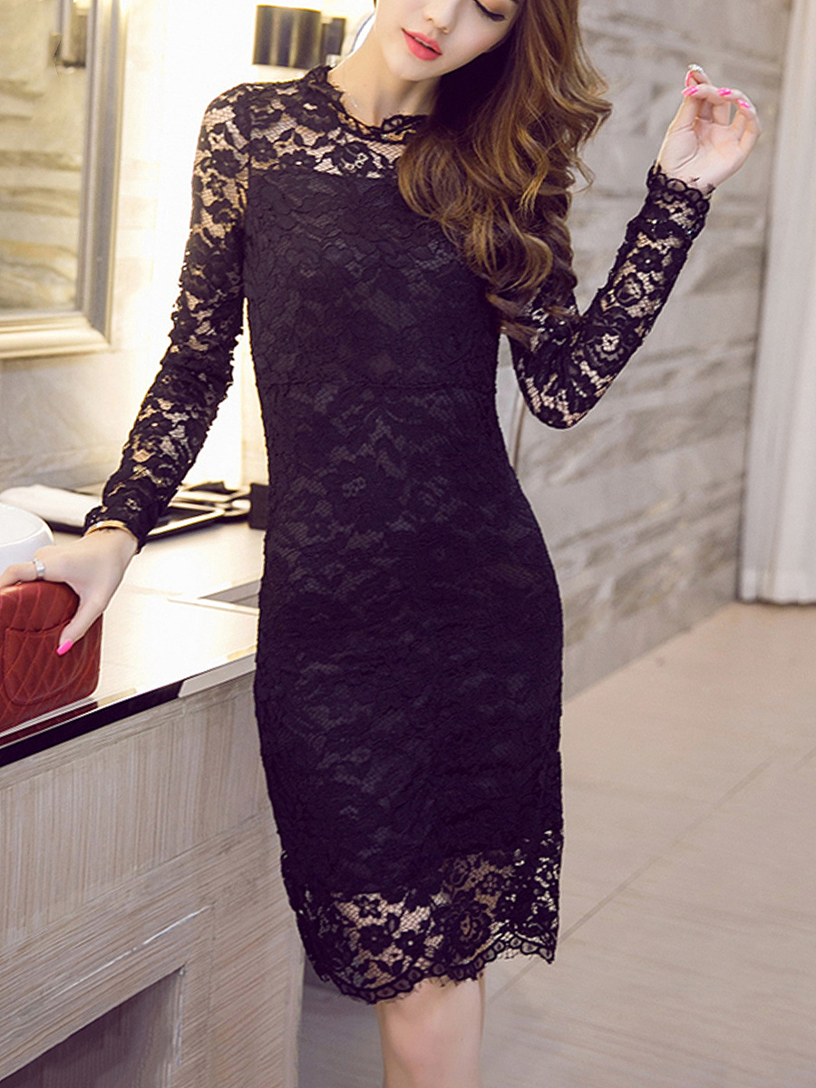 Band Collar See-Through Lace Plain Bodycon Dress