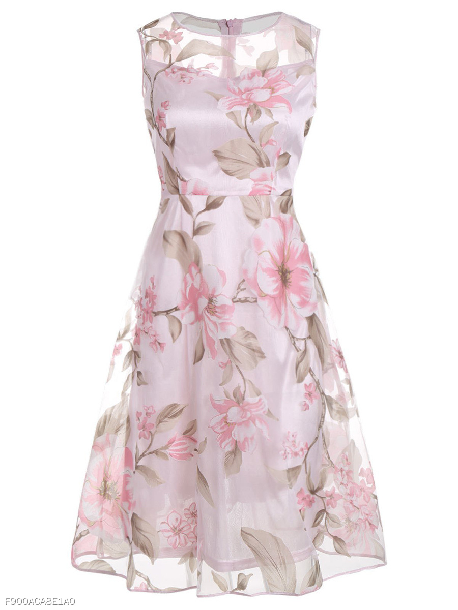 Round Neck See-Through Floral Printed Skater Dress