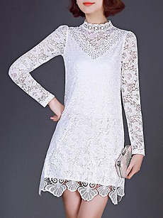 Band Collar  Lace Plain Shift Dress